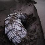 """""""Unearthly"""" by Klasiena Soepboer, NL"""