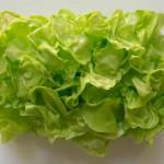 """""""Kleiner grüner Salat"""" by Stefan Gross, NL"""