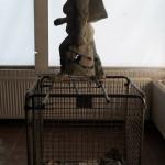 """Shopping"" by Martijn Koolstra, 110*30*35cm, 2014, NL"